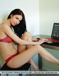 Dita V nude in softcore..