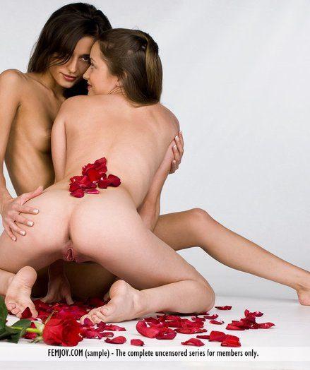 Free Veranda - IDONIA, MILANA - Several Flowers